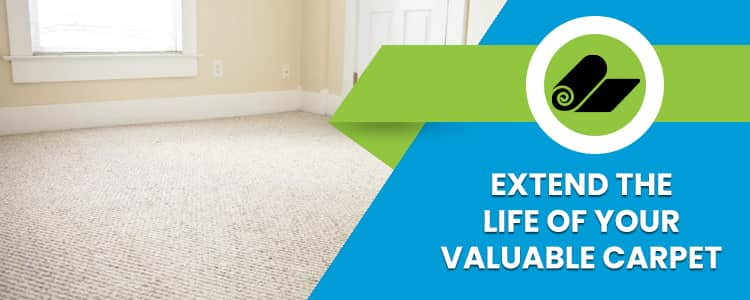 Extend The Life of Your Valuable Carpet