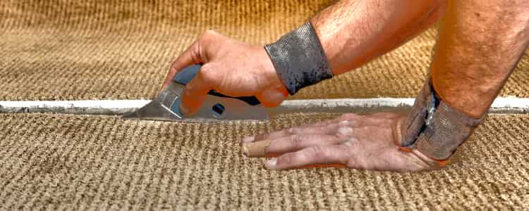 Best Carpet Repair Mawson Lakes