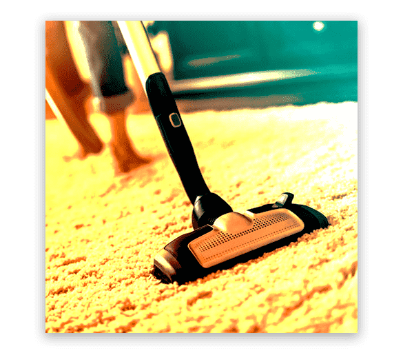 Professional Carpet Cleaning Mawson Lakes